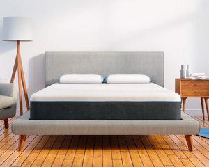 bear pro mattress