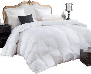 Egyptian Bedding comforter